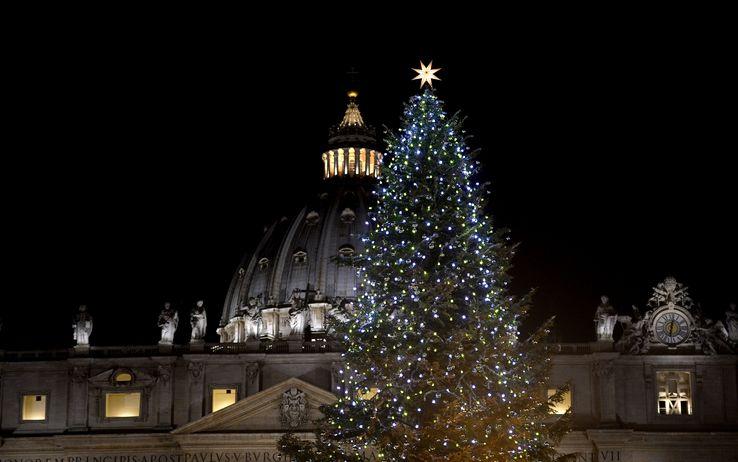 圣诞树和米开朗基罗穹顶